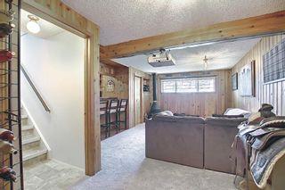 Photo 19: 136 Abingdon Way NE in Calgary: Abbeydale Detached for sale : MLS®# A1097346