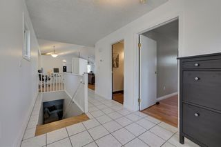 Photo 27: 11216 79 Street in Edmonton: Zone 09 House for sale : MLS®# E4222208
