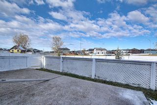 Photo 31: 141 SADDLEMEAD Road in Calgary: Saddle Ridge Detached for sale : MLS®# A1052360