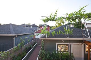 """Photo 6: 24245 102 Avenue in Maple Ridge: Albion House for sale in """"ALBION"""" : MLS®# R2598161"""