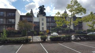 "Photo 1: 216 15268 100 Avenue in Surrey: Guildford Condo for sale in ""Cedar Grove"" (North Surrey)  : MLS®# R2206064"