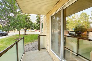 Photo 28: 3102 393 Patterson Hill SW in Calgary: Patterson Apartment for sale : MLS®# A1136424
