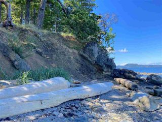 Photo 9: 6601 RAZOR POINT Road: Pender Island House for sale (Islands-Van. & Gulf)  : MLS®# R2460989