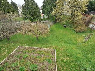 Photo 12: 3167 Carroll St in VICTORIA: Vi Burnside House for sale (Victoria)  : MLS®# 636095