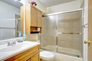 Photo 19: 25 Martinview Crescent NE in Calgary: Martindale Detached for sale : MLS®# A1107227