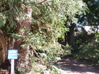 Photo 8: 7700 VIVIAN Way in : CV Union Bay/Fanny Bay House for sale (Comox Valley)  : MLS®# 852223