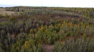 Photo 15: Hwy 11 & RR 53: Rural Parkland County Rural Land/Vacant Lot for sale : MLS®# E4265869
