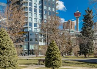 Photo 29: 407 310 12 Avenue SW in Calgary: Beltline Apartment for sale : MLS®# A1099802