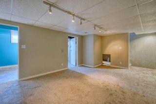 Photo 31: 231 Regal Park NE in Calgary: Renfrew Row/Townhouse for sale : MLS®# A1068574