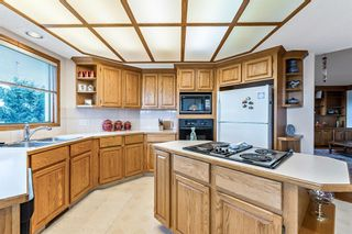 Photo 10: 96 Mt Robson Circle SE in Calgary: McKenzie Lake Detached for sale : MLS®# A1046953