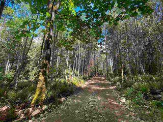 Photo 10: 740 EAGLES REST Lane: Galiano Island Land for sale (Islands-Van. & Gulf)  : MLS®# R2586632
