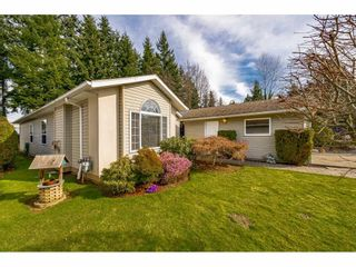 """Photo 3: 144 9080 198 Street in Langley: Walnut Grove Manufactured Home for sale in """"Forest Green Estates"""" : MLS®# R2547328"""