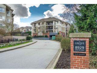 "Main Photo: C305 8929 202 Street in Langley: Walnut Grove Condo for sale in ""GROVE CONDOS"" : MLS®# R2610947"