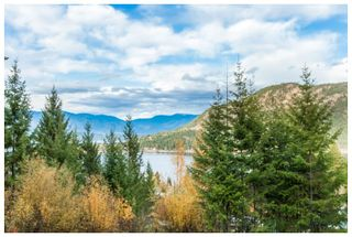 Photo 13: 2391 Mt. Tuam: Blind Bay House for sale (Shuswap Lake)  : MLS®# 10125662