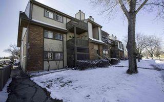 Photo 1: 204 1666 Jefferson Avenue in Winnipeg: Maples / Tyndall Park Condominium for sale (North West Winnipeg)  : MLS®# 1606236