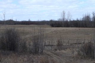 Photo 19: Twp 510 RR 33: Rural Leduc County Rural Land/Vacant Lot for sale : MLS®# E4239253