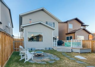 Photo 33: 69 ELGIN MEADOWS Link SE in Calgary: McKenzie Towne Detached for sale : MLS®# A1098607