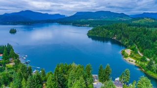 Photo 65: 8240 Dickson Dr in : PA Sproat Lake House for sale (Port Alberni)  : MLS®# 882829