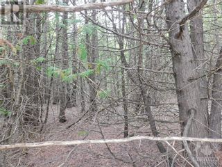 Photo 9: ROCKSPRINGS ROAD in North Augusta: Vacant Land for sale : MLS®# 1262472