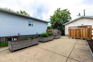 Photo 44:  in Edmonton: Zone 04 House for sale : MLS®# E4248563