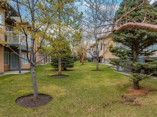 Photo 4: 25 SHANNON ESTATES Terrace SW in Calgary: Shawnessy Semi Detached for sale : MLS®# C4225624