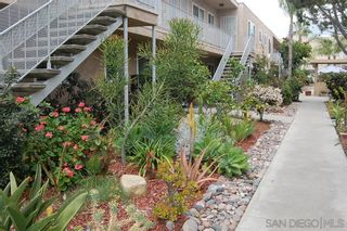 Photo 11: NORMAL HEIGHTS Condo for sale : 1 bedrooms : 3532 Meade Ave #17 in San Diego