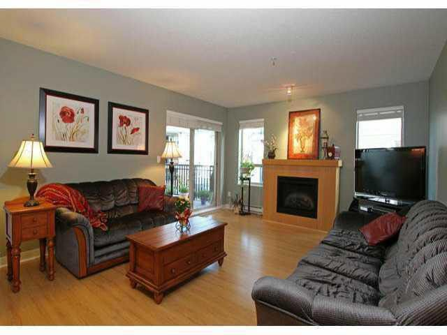 Main Photo: E303 8929 202 STREET in : Walnut Grove Condo for sale : MLS®# F1310934