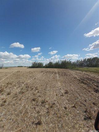 Photo 6: Rystrom Acreage in Corman Park: Lot/Land for sale (Corman Park Rm No. 344)  : MLS®# SK866589