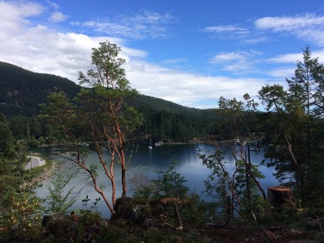 This acreage has a lovely view into Bargain Harbour