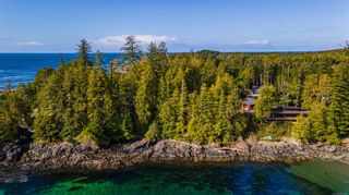 Photo 12: 863 Elina Rd in : PA Ucluelet Land for sale (Port Alberni)  : MLS®# 870302