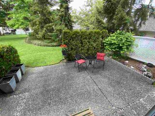 """Photo 20: 1001 21937 48 Avenue in Langley: Murrayville Townhouse for sale in """"Orangewood"""" : MLS®# R2428223"""
