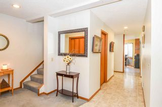 Photo 17: 1244 Berkley Drive NW in Calgary: Beddington Heights Detached for sale : MLS®# A1118414