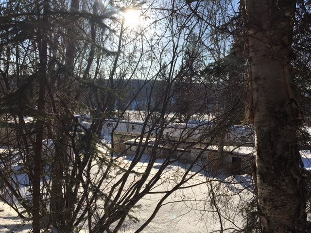 """Photo 15: Photos: 30 3656 HILBORN Road in Quesnel: Quesnel - Rural North Manufactured Home for sale in """"PARK VILLAGE TRAILER PARK"""" (Quesnel (Zone 28))  : MLS®# R2437921"""