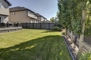 Photo 39: 17 Cranberry Lane SE in Calgary: Cranston Detached for sale : MLS®# A1142868