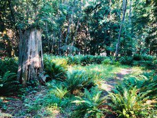 Photo 21: 473 FELIX JACK Road: Mayne Island Land for sale (Islands-Van. & Gulf)  : MLS®# R2597581