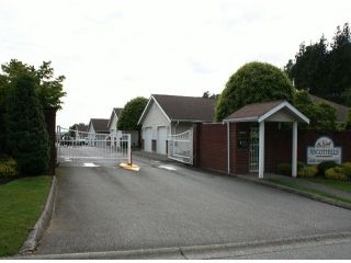 "Photo 20: 38 2081 WINFIELD Drive in Abbotsford: Abbotsford East Townhouse for sale in ""Ascot Hills"" : MLS®# F1413528"