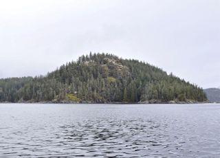 Main Photo: DL784 Read Island in : Isl Read Island Land for sale (Islands)  : MLS®# 866880