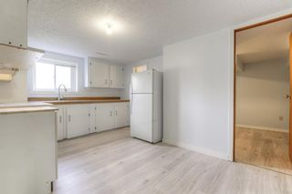 Photo 18: 2526 17 Street NW in Calgary: Capitol Hill Detached for sale : MLS®# A1100233