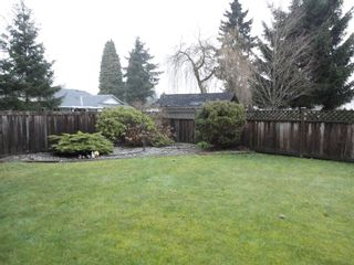 Photo 29: 9168 160A STREET in MAPLE GLEN: House for sale