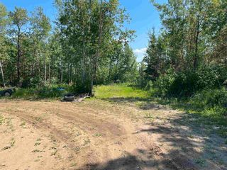 Photo 38: 240071 Twp Rd 623: Rural Athabasca County House for sale : MLS®# E4258025