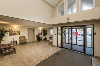 Photo 29: 320 7511 171 Street in Edmonton: Zone 20 Condo for sale : MLS®# E4225318