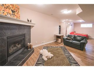 Photo 39: 84 CHAPALA Square SE in Calgary: Chaparral House for sale : MLS®# C4074127