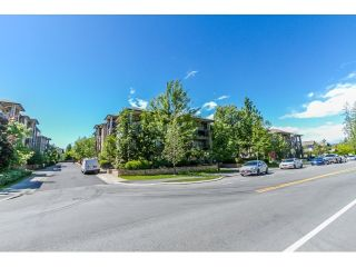 "Photo 39: 506 8717 160 Street in Surrey: Fleetwood Tynehead Condo for sale in ""Vernazza"" : MLS®# R2066443"