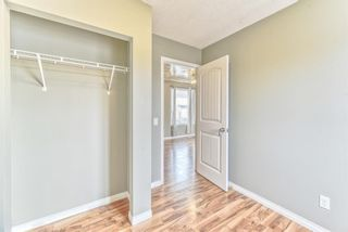 Photo 16: 1101 53A Street SE in Calgary: Penbrooke Meadows Row/Townhouse for sale : MLS®# A1093986