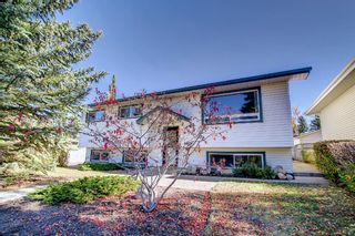 Photo 38: 9804 Alcott Road SE in Calgary: Acadia Detached for sale : MLS®# A1153501