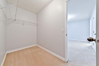 Photo 29: 167 BRIDLEWOOD CM SW in Calgary: Bridlewood House for sale