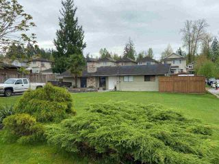 """Main Photo: 24340 102 Avenue in Maple Ridge: Albion House for sale in """"Albion"""" : MLS®# R2573645"""