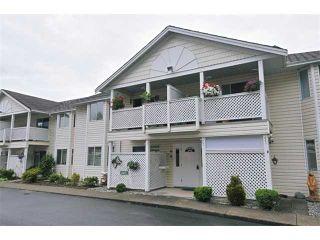 "Main Photo: 11 20799 119TH Avenue in Maple Ridge: Southwest Maple Ridge Townhouse for sale in ""MEADOW RIDGE ESTATES"" : MLS®# V901777"