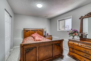 Photo 27: 686 Coventry Drive NE in Calgary: Coventry Hills Detached for sale : MLS®# A1116963