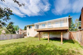 Photo 8: 203 Range Crescent NW in Calgary: Ranchlands Detached for sale : MLS®# A1111226